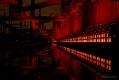 Koksöfen der Kokerei Zollverein von der weißen Seite aus fotografiert.